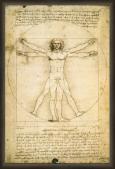 Leonardo Da Vinci - Anatomy