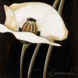 Excellent II - Beate Emanuel