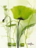 Coquelicot vert II