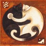 Yin Chi Yang Chats