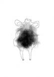 Cow - Anne Waltz