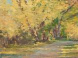 Fall Path I