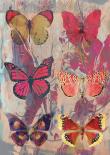 Butterflies lila - Anne Waltz