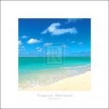 Tropical Horizons III