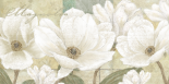 Magnolia - Linda Wood
