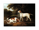 A Pointer and Two Spaniels in a Park
