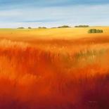 Red field - Hans Paus