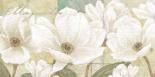 Magnolia - Wood Linda