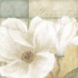 Aqua magnolia II - Wood Linda