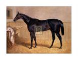 Sweetmeat, 1846