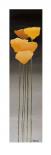 Yellow Flowers II - Carlo Marini
