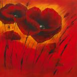 Quand l�amour fleurit I - Isabelle Zacher-Finet