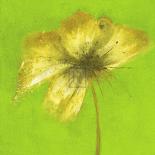 Floral Burst VI