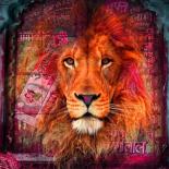 Lion I  - Mascha de Haas