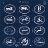 Blueprint Zodiac