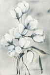 weiße Tulpen II