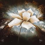Fleur étoile I