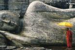 Buddha - Monk