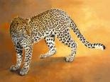 Léopard du Serengeti