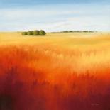 Red field II - Hans Paus