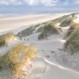 Les dunes - pastel