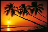 Beach - Evening