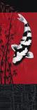Premium Shiro Utsuri