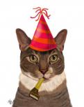 Tortoiseshell Cat, Party Hat