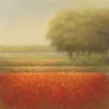Autumn field - Hans Dolieslager