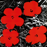 Flowers (Red), 1964