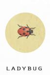 Ladybug - Anne Waltz