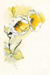Carols Roses II