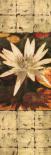Waterlily Panel I
