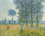 Felder im Frühling