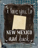 New Mexico and Back