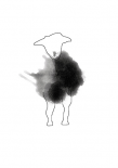 Sheeparella - Anne Waltz
