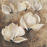 Magnolia I - Yuliya Volynets