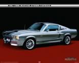 Right Foot Fanatics - Ford Mustang