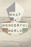 wonderful world I - Anne Waltz