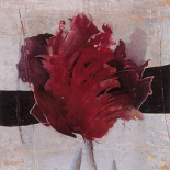 Estella Tulip II - Heleen Vriesendorp