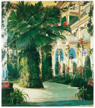 Interior of a Palm House