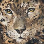 Leopard - Yuliya Volynets