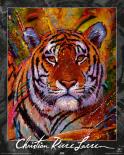 Lassen - Tiger