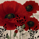 Red poppies II - Linda Wood