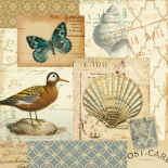 Coastal Collage I