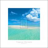Tropical Horizons IV