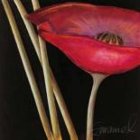 Excellent III - Beate Emanuel