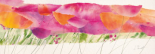 Poppy ribbon pink
