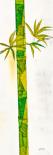 Bambus Duo I