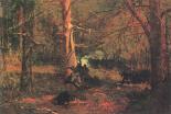 Skirmish In The Wilderness